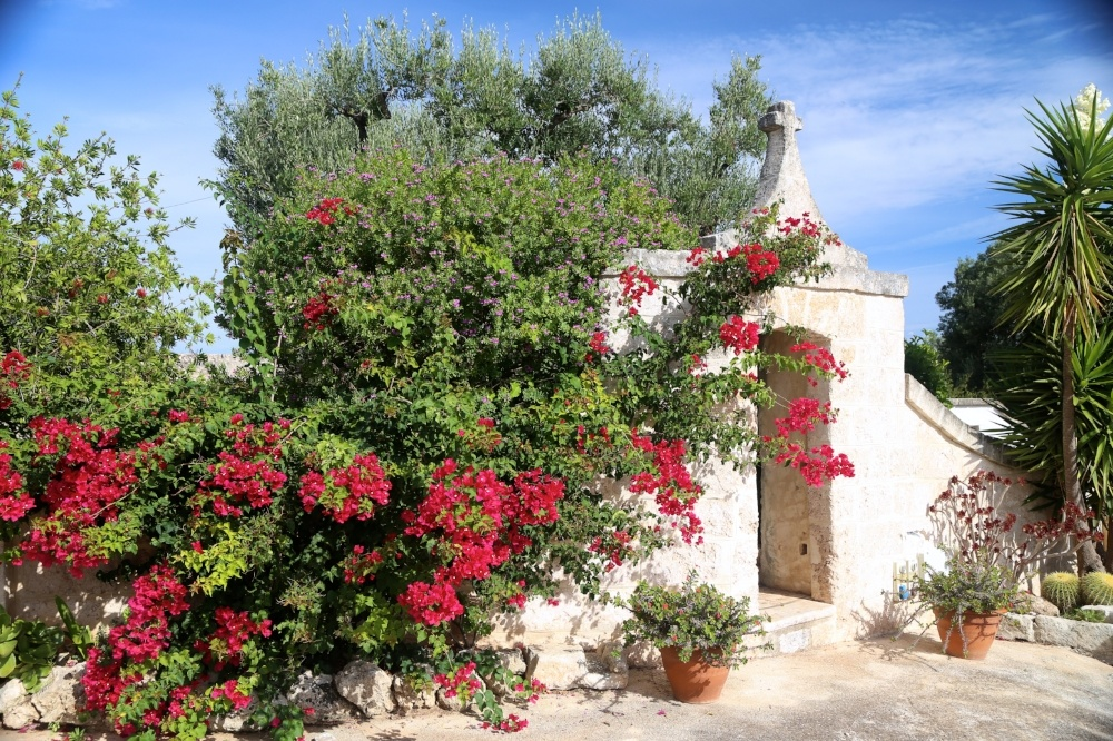 Puglia by bicycle