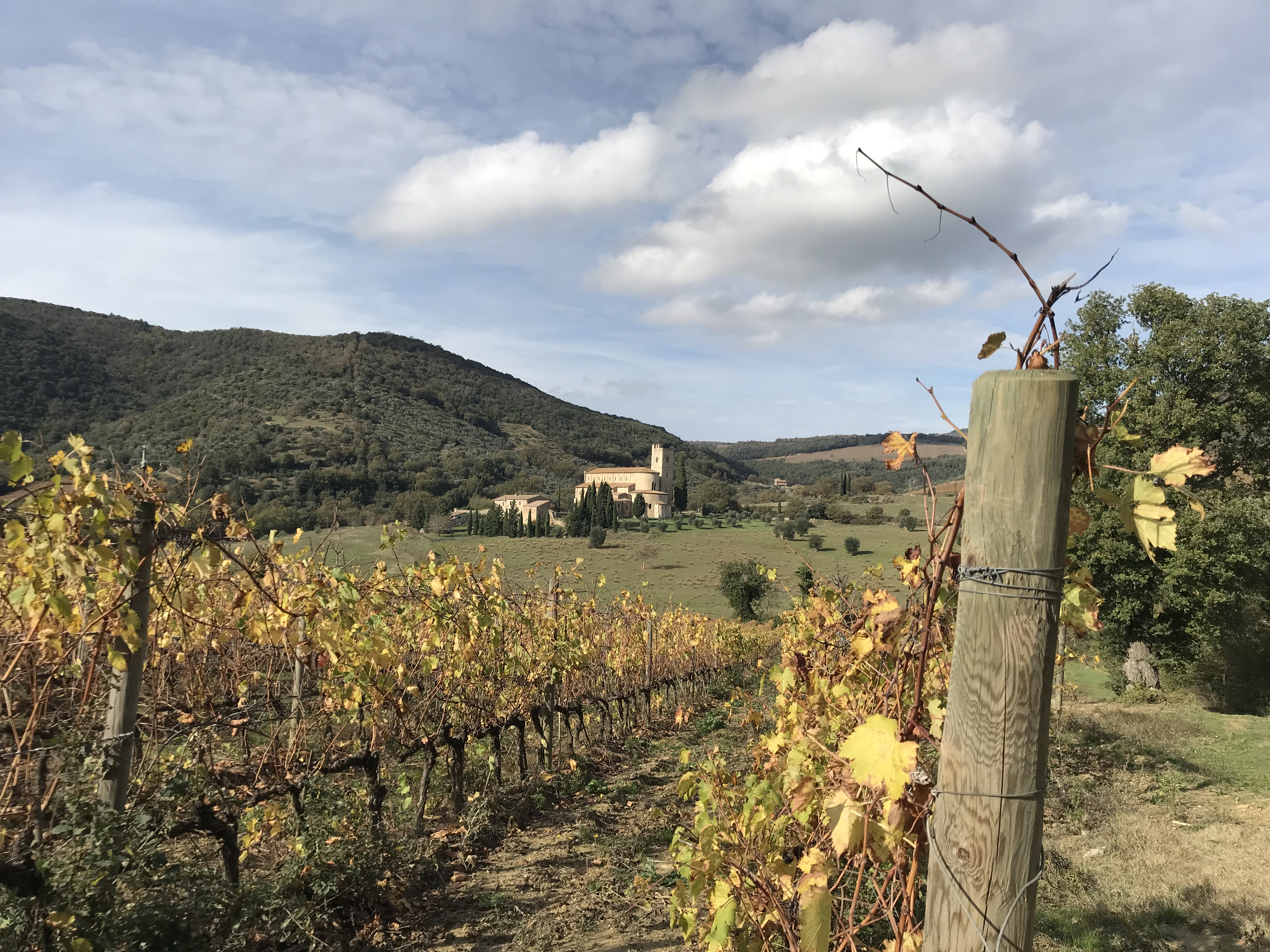 Tuscany cycling and cooking tour